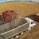 Exclusive Guide: 10 Things To Know When Buying Grain Truck