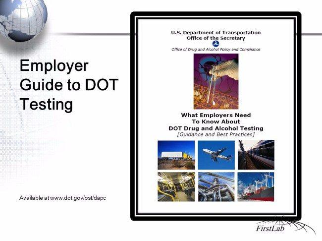 Non Dot Drug Testing Regulations