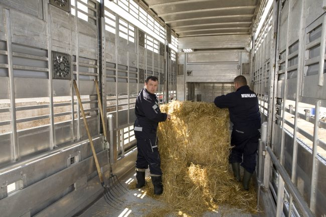 Source: www.farmsolution.hu