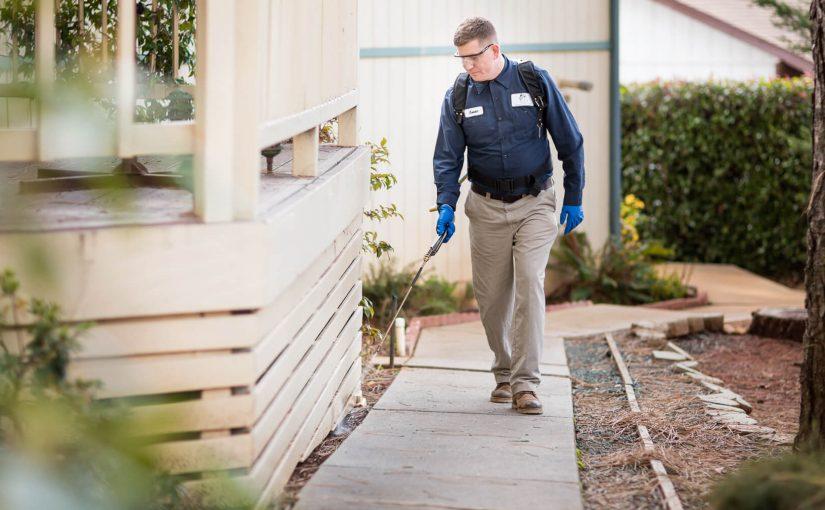 Pest Control Atlanta: 15 Leading Service Providers