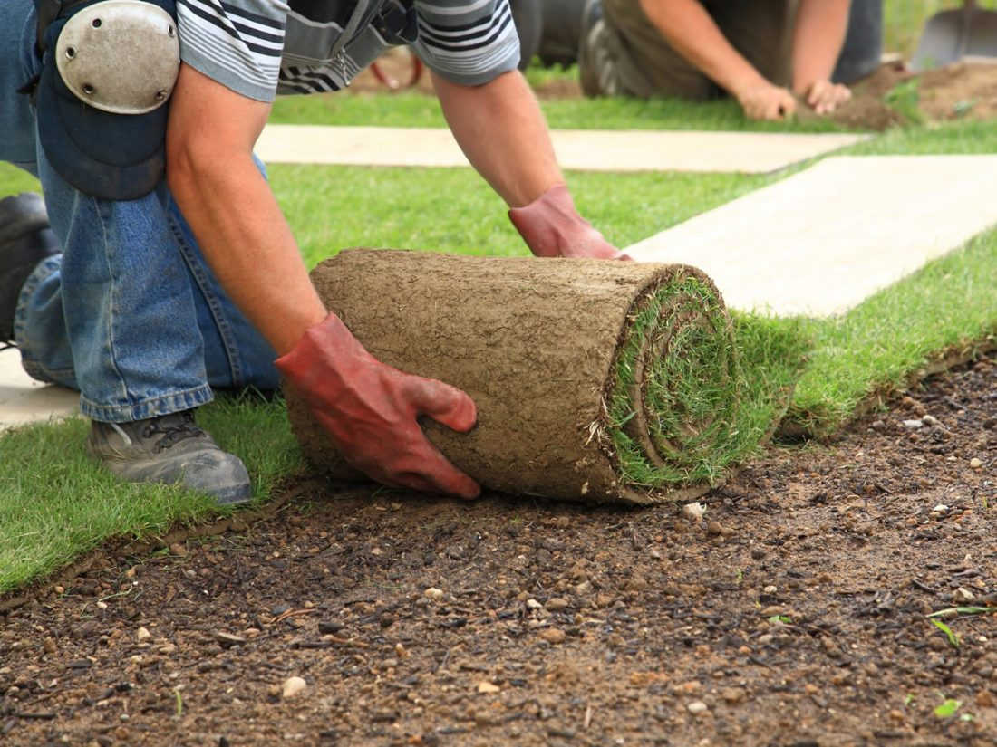 - Top 10 Landscaping Companies In The USA