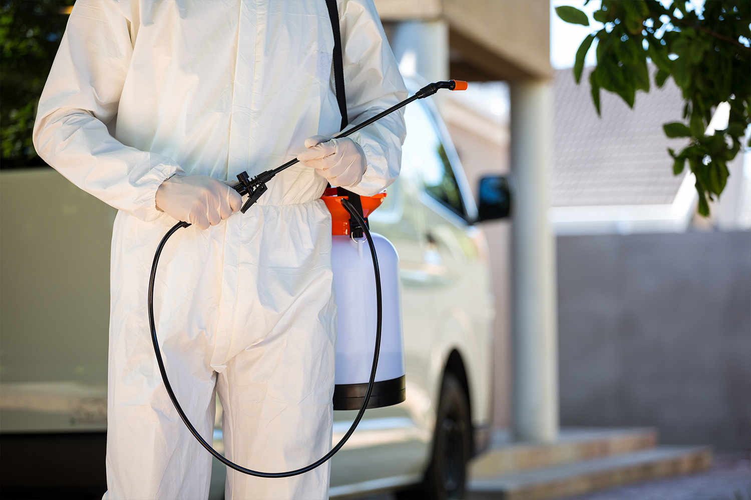 Pest Control Training: Which Companies and Schools are the Best?